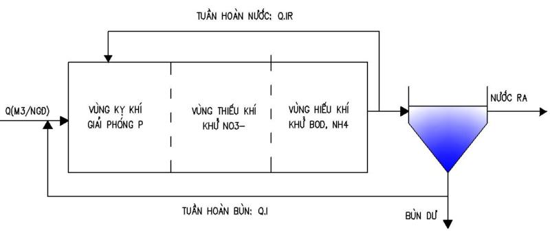 Hình 1. Sơ đồ dòng chảy công nghệ AAO